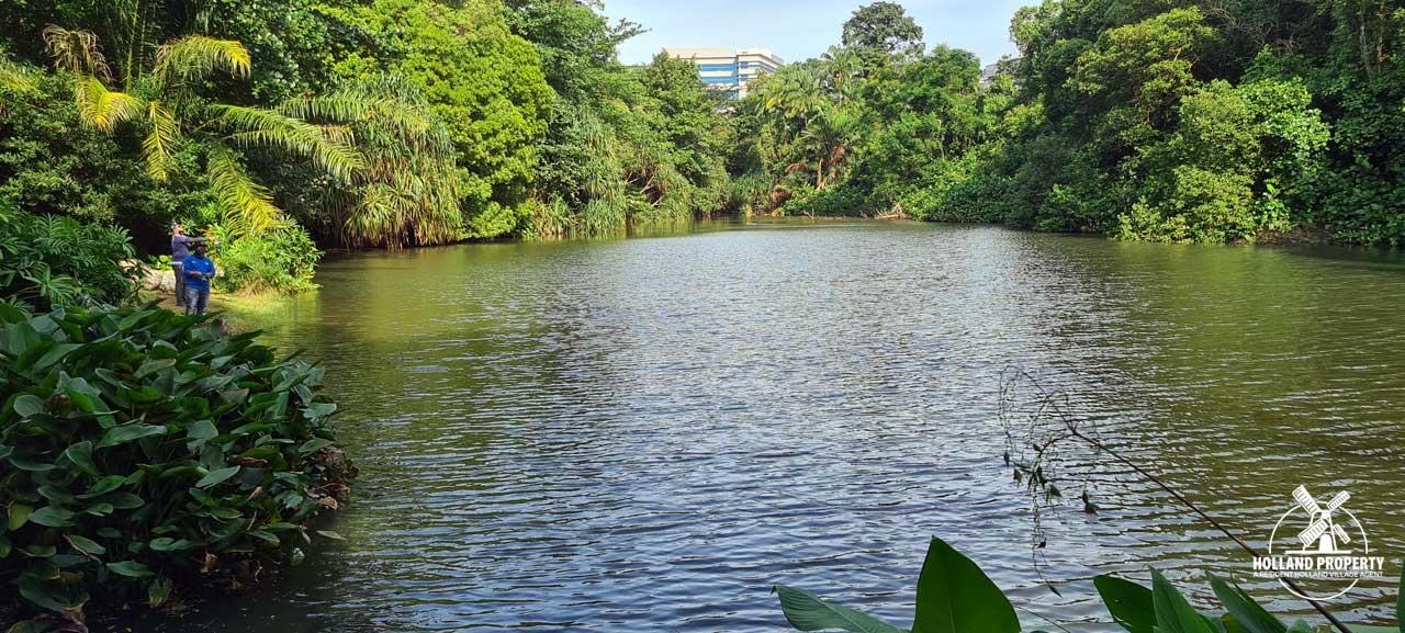 pond near normanton park